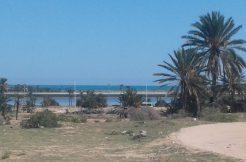 deux terrains titrés à vendre vue de la lagune et la mer à Tézdaine Djerba