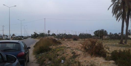 un spacieux terrain à vendre à Djerba Midoun route d'aghir