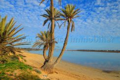 Spacieux appartement meublé s+3 vue de mer à tezdaine  – Djerba