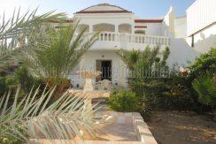Maison meublée  spacieuse  à louer à l'année  proche Géant Djerba Midoun