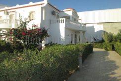 Propriété titrée  de deux maisons à vendre proche Géant Djerba Midoun