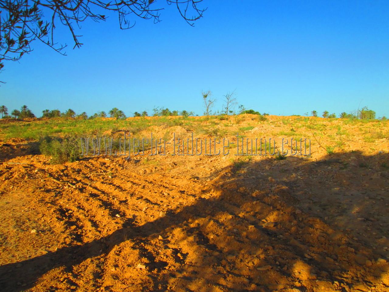 Terrain titré à vendre en zone urbaine touristique avec vue de mer proche rond point RDV Djerba Midoun