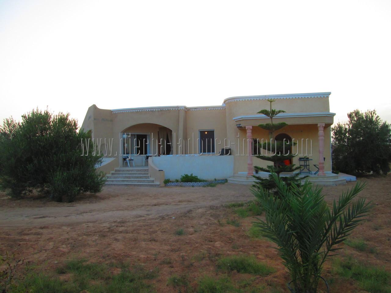 Spacieuse maison avec studio à louer meublée à l'année à Guéchiine Djerba Houmt Souk
